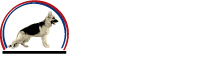 Professional Dog Trainer in Thousand Oaks